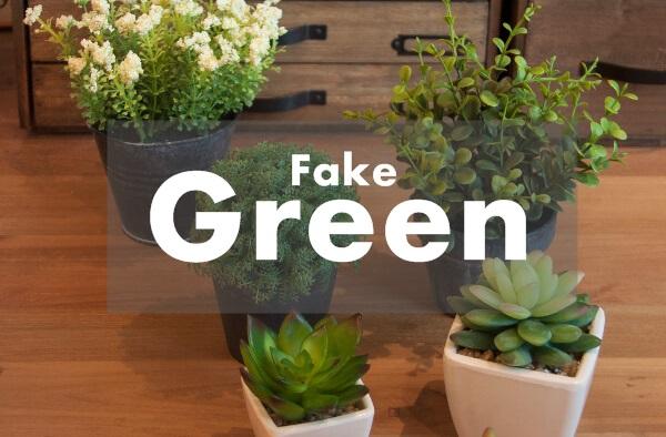 グリーン・観葉植物
